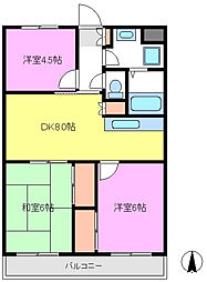 千葉県松戸市新松戸7丁目の賃貸マンションの間取り