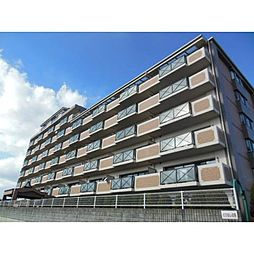 岡山県岡山市中区さいの賃貸マンションの外観