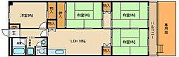 東山本ハイツ[131号室]の間取り