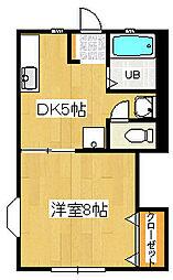 セゾン8[2階]の間取り