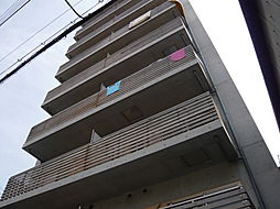 カシェット住吉[4階]の外観