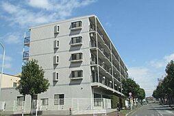 ラフィネ幕張本郷[5階]の外観