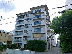 SAMURAIマンション(サムライマンション)[203号室号室]の外観