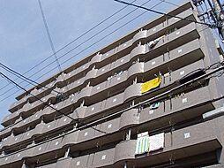 サンシャインハイツ[402号室]の外観