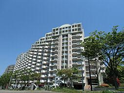 福岡県北九州市八幡西区鉄竜1丁目の賃貸マンションの外観