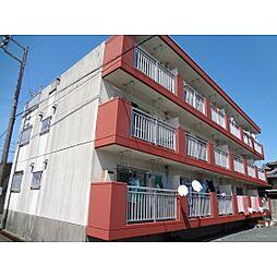 静岡県浜松市南区頭陀寺町の賃貸マンションの間取り