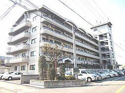 マンションナシマ[207号室]の外観