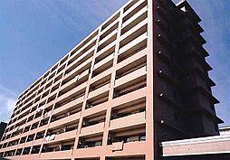 アイタス福岡[4階]の外観