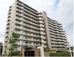 神奈川県藤沢市大庭の賃貸マンションの外観