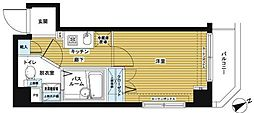 トーシンフェニックス日本橋兜町壱番館[501号室]の間取り