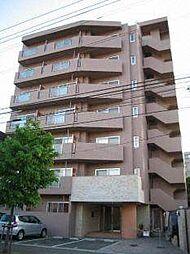 コートロティ円山[7階]の外観