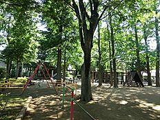 周辺環境:西永福公園