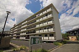 福岡県中間市大字上底井野の賃貸マンションの外観