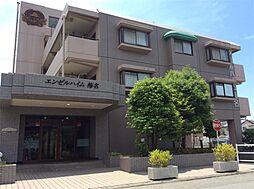 三島市梅名