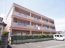 サンテラスNAWA[1階]の外観