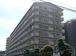パサージュ彦根[4階]の外観