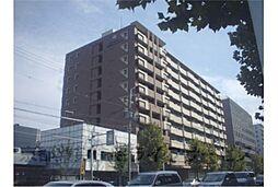 ライジングコート京都西院フロンティア[8階]の外観