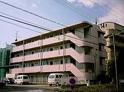 大阪府豊中市島江町2丁目の賃貸マンションの外観