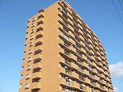愛知県名古屋市天白区梅が丘3丁目の賃貸マンションの外観