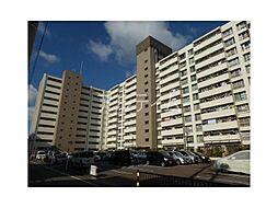 九条住宅B棟[9階]の外観