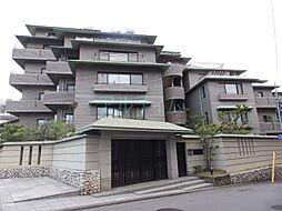 スティーロ京都東山妙法院[4階]の外観