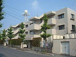 埼玉県川口市戸塚境町の賃貸マンションの外観