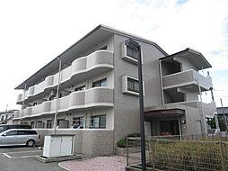 エントピア藤井[3階]の外観