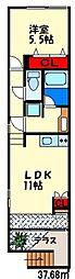 モミジアパートメント[1階]の間取り
