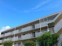 ひばりが丘シティプラザ[4階]の外観