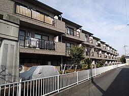 神奈川県相模原市南区上鶴間4丁目の賃貸マンションの外観