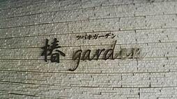 椿ガーデン[1階]の外観