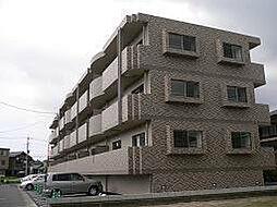 鹿児島県鹿児島市谷山中央7丁目の賃貸マンションの外観