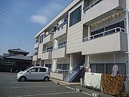 大塚ハイツA棟[305号室]の外観