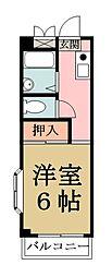 埼玉県八潮市大字上馬場の賃貸マンションの間取り