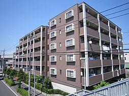 ステラビュー新横浜[204号室]の外観