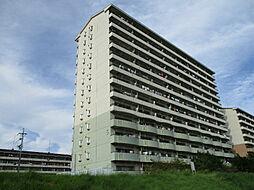 URアーバンラフレ小幡5号棟[7階]の外観