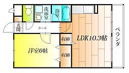 大阪府羽曳野市蔵之内の賃貸マンションの間取り