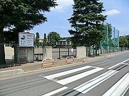 シャトー・レ・セルズィエール[602号室]の外観