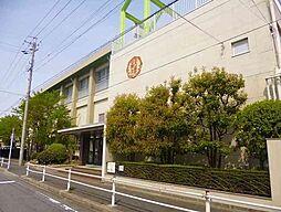 昭和橋小学校 徒歩6分