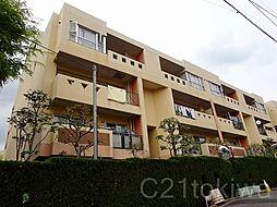 埼玉県朝霞市根岸台3丁目の賃貸マンションの外観