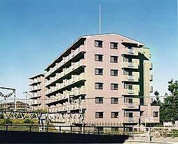 神奈川県横浜市旭区さちが丘144の賃貸マンションの外観