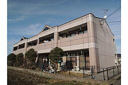 滋賀県東近江市五智町の賃貸マンションの外観