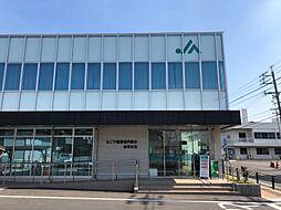JAなごや(岩塚支店) 徒歩9分
