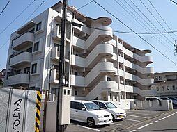 福岡県福岡市城南区田島2丁目の賃貸マンションの外観