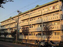 ニュー松戸コーポD棟[1階]の外観