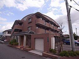 福岡県太宰府市向佐野1丁目の賃貸マンションの外観