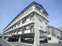 ドリームハウス1[2階]の外観