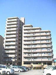 シーアイマンション京王稲城[503号室]の外観