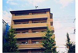 京都府京都市右京区太秦京ノ道町の賃貸マンションの外観
