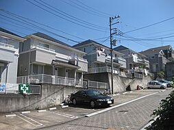 [テラスハウス] 神奈川県横浜市旭区市沢町 の賃貸【/】の外観